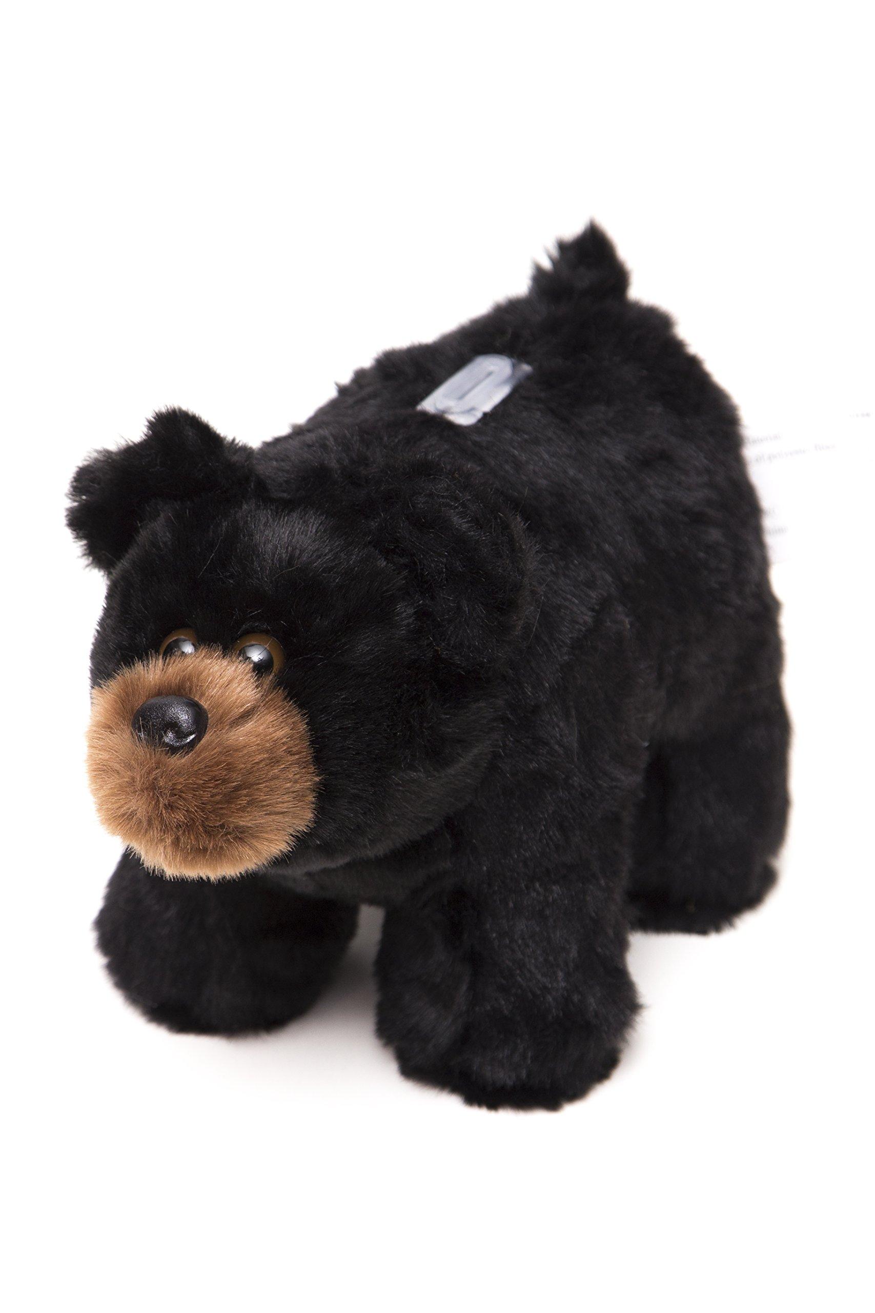 Carstens Plush Bear Kids Coin Bank