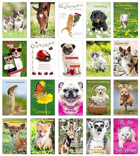 Geburtstagskarten zum ausdrucken mit katzen