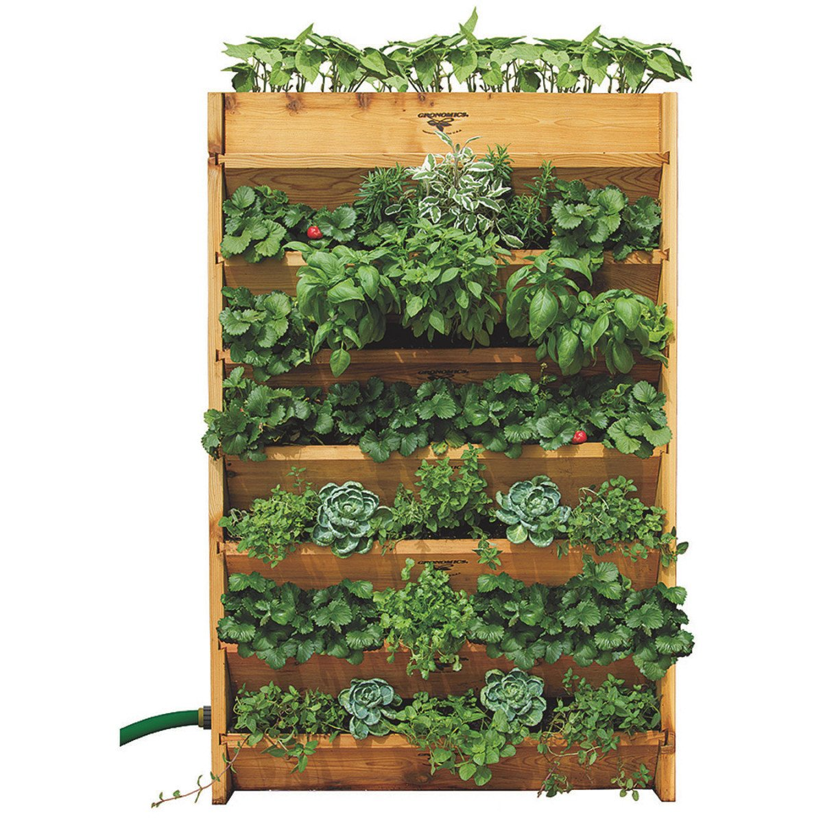 mg planter from assorted vertical this garden category plus burlington in center gardening