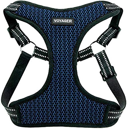 Voyager Step-in Flex Dog Harness Small Step in Adjustable Harness for Small and Medium Dogs by Best Pet Supplies All Weather Mesh Royal Blue