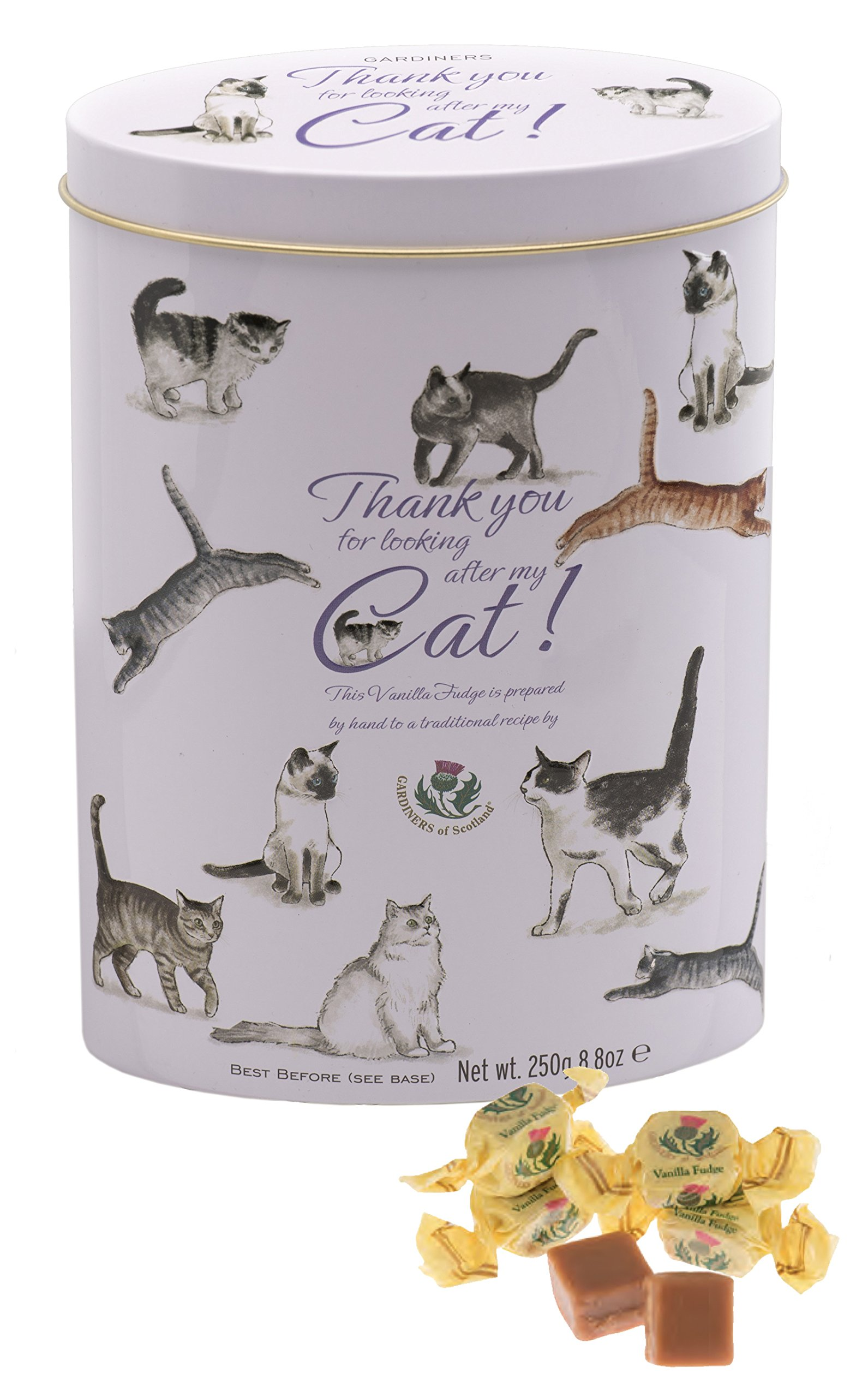 Gardiners of Scotland Vanilla Fudge Thank You Tins 'Cats', 8.8-Ounce