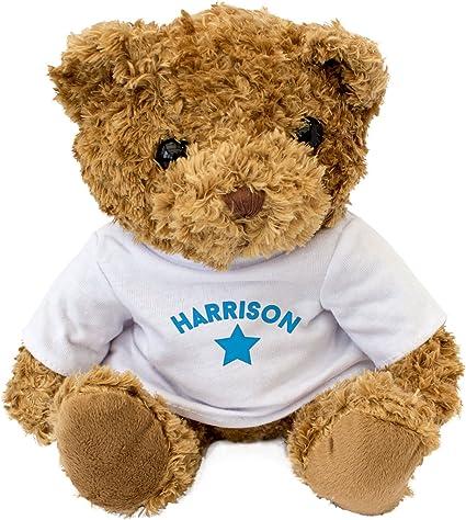 Amazon.com: New - Harrison - Cute and Cuddly Teddy Bear - Gift Present Xmas  Birthday: Toys & Games