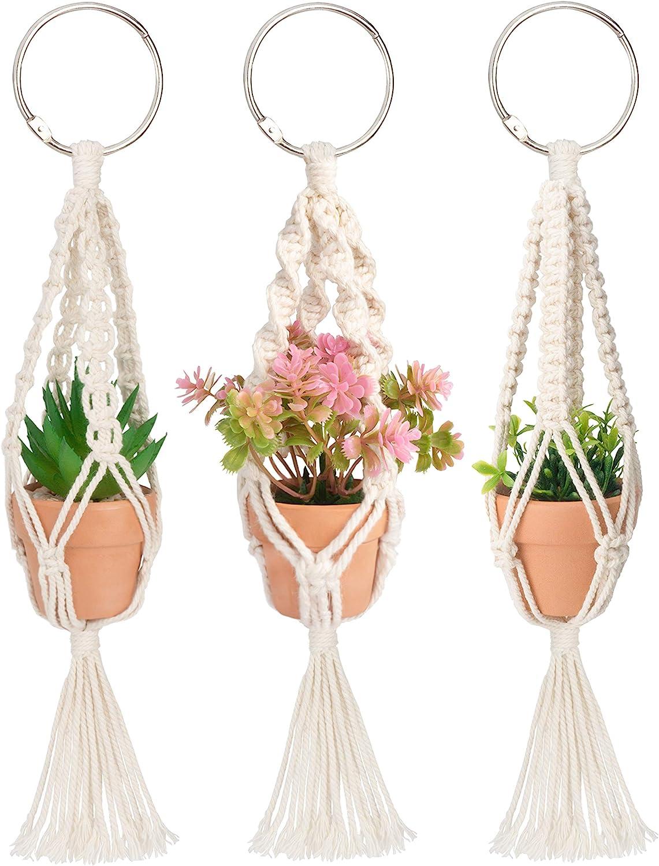 Mini Macrame Purple Pink Plant Hanger Terra Cotta Pots Live Air Plants Sterling Silver Earrings