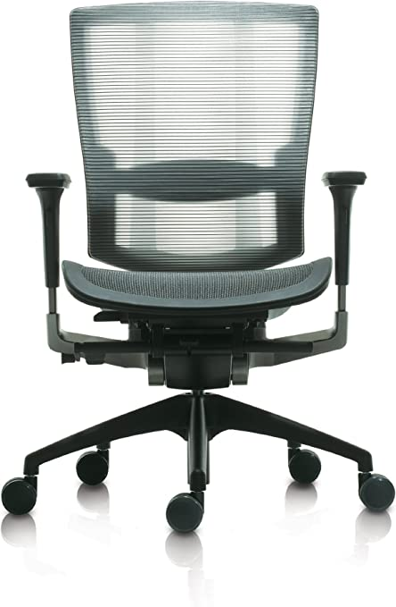 Br 250m Line Mesh Gray Fully Loaded Ergonomic Home Office Chair With Adjustable Lumbar Amazon Co Uk Kitchen Home