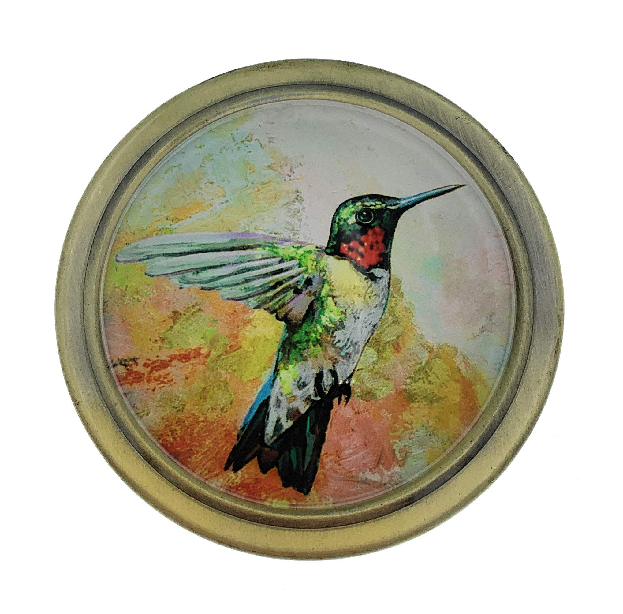 Value Arts Hummingbird Folding Magnifying Glass Paperweight, 2.5 Inches Diameter by Value Arts