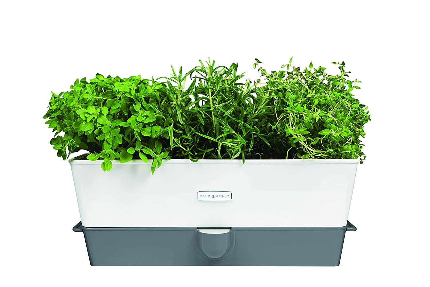 Cole & Mason Fresh Herb Range Self-Watering Potted Herb Keeper, Enamel Coated Steel, White and Grey, Triple DKB HOUSEHOLD DISTRIBUTION AG H105349