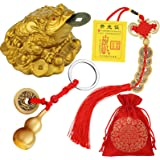 3 Pieces Feng Shui Money Frog Chinese Knot Lucky Coins Feng Shui Brass Wu Lou with Coins Keychain for Longevity Travel Safely
