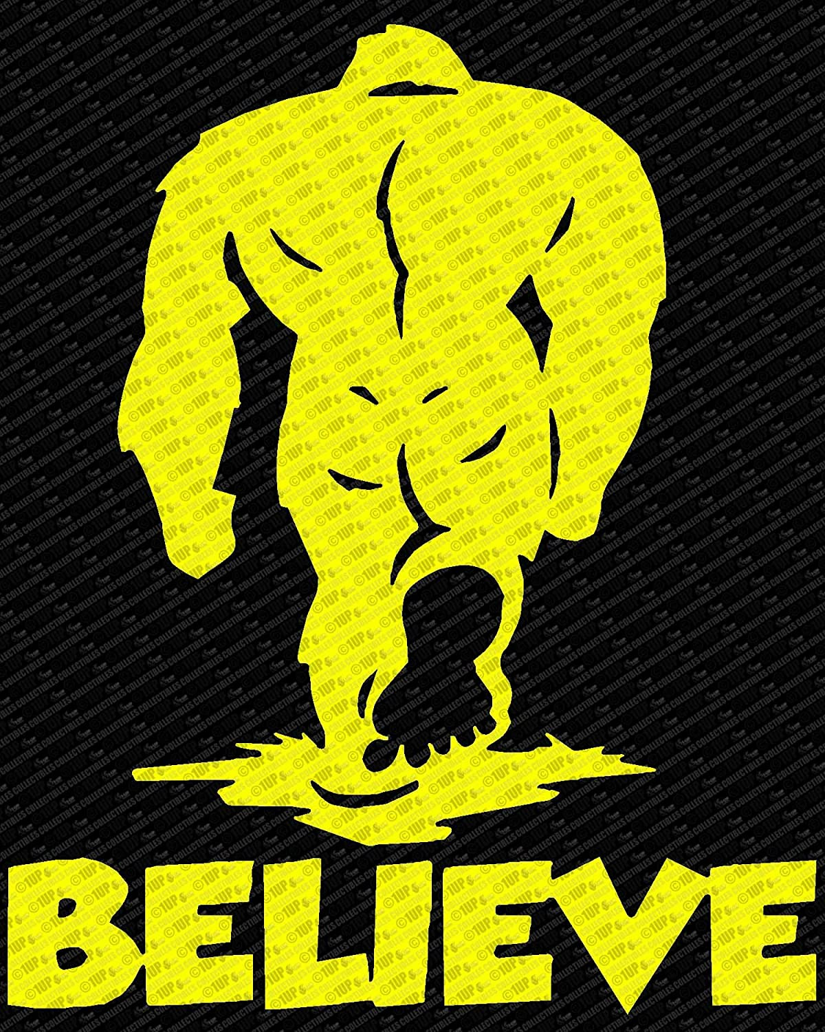 Amazon.com: Bigfoot Believe - Sasquatch ver 1 Logo Die Cut Vinyl Decal Sticker (10