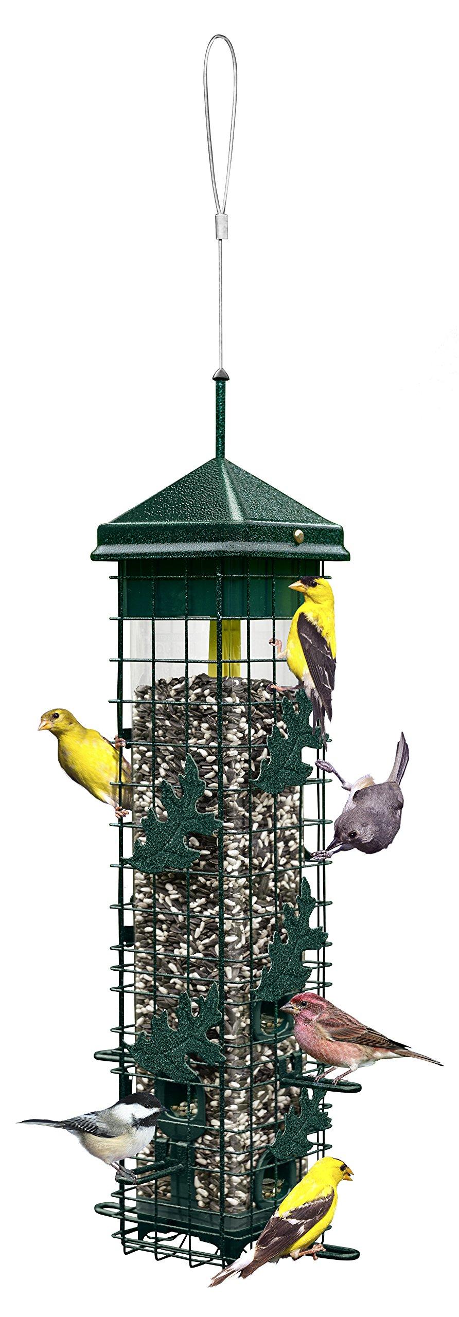Squirrel Solution200 5.5''x5.5''x30'' (w/hanger) Wild Bird Feeder with 6 Feeding Ports, 3.4lb Seed Capacity, Free Seed Funnel