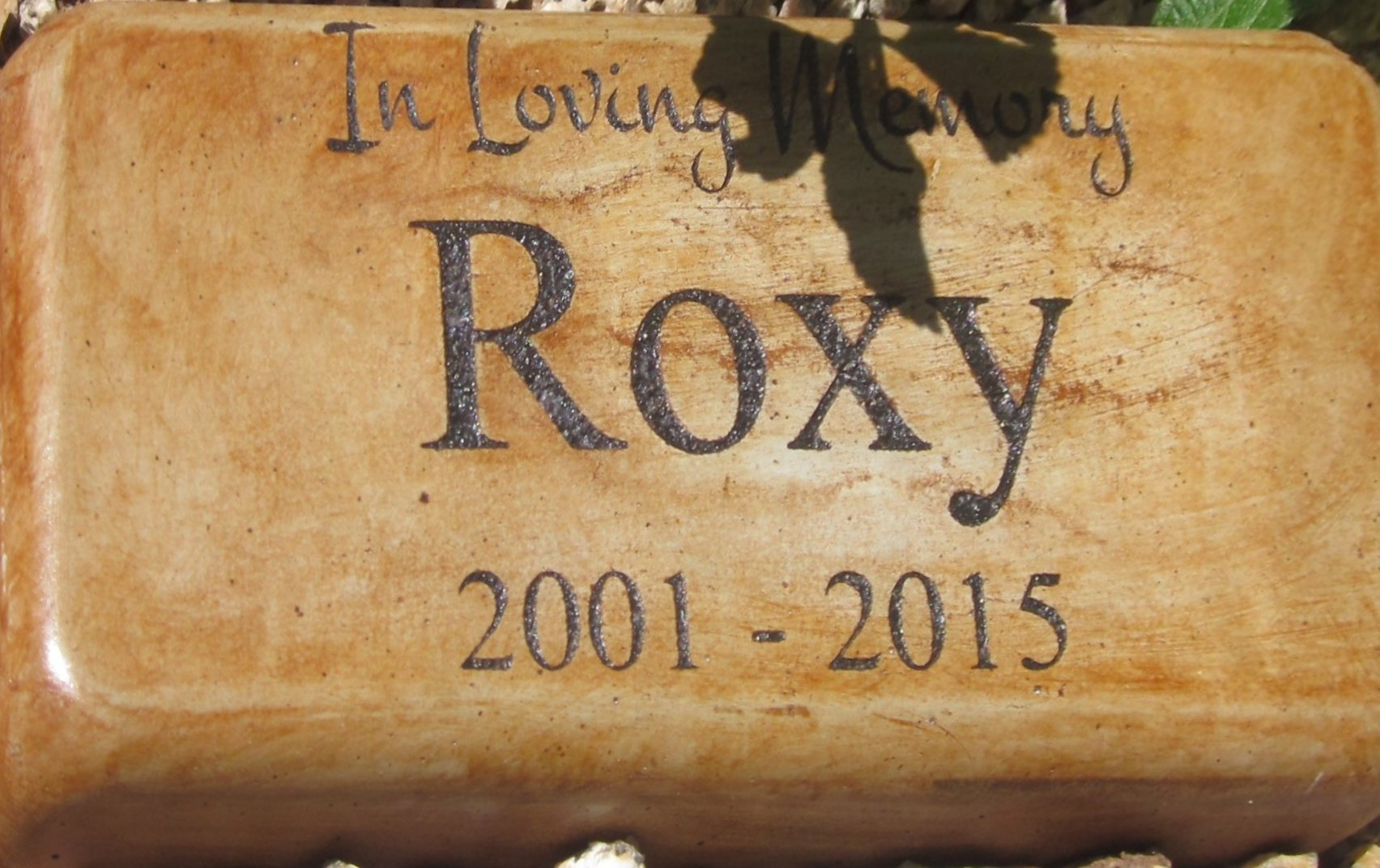 Personalized Engraved Pet Memorial Step Stone Dimension: 8'' X 4'' (Brick Size)