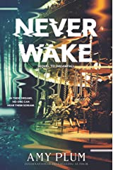 Neverwake (Dreamfall) Paperback