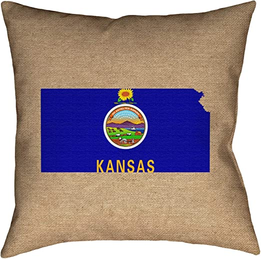 ArtVerse Katelyn Smith 14 x 14 Poly Twill Double Sided Print with Concealed Zipper /& Insert Kansas Pillow