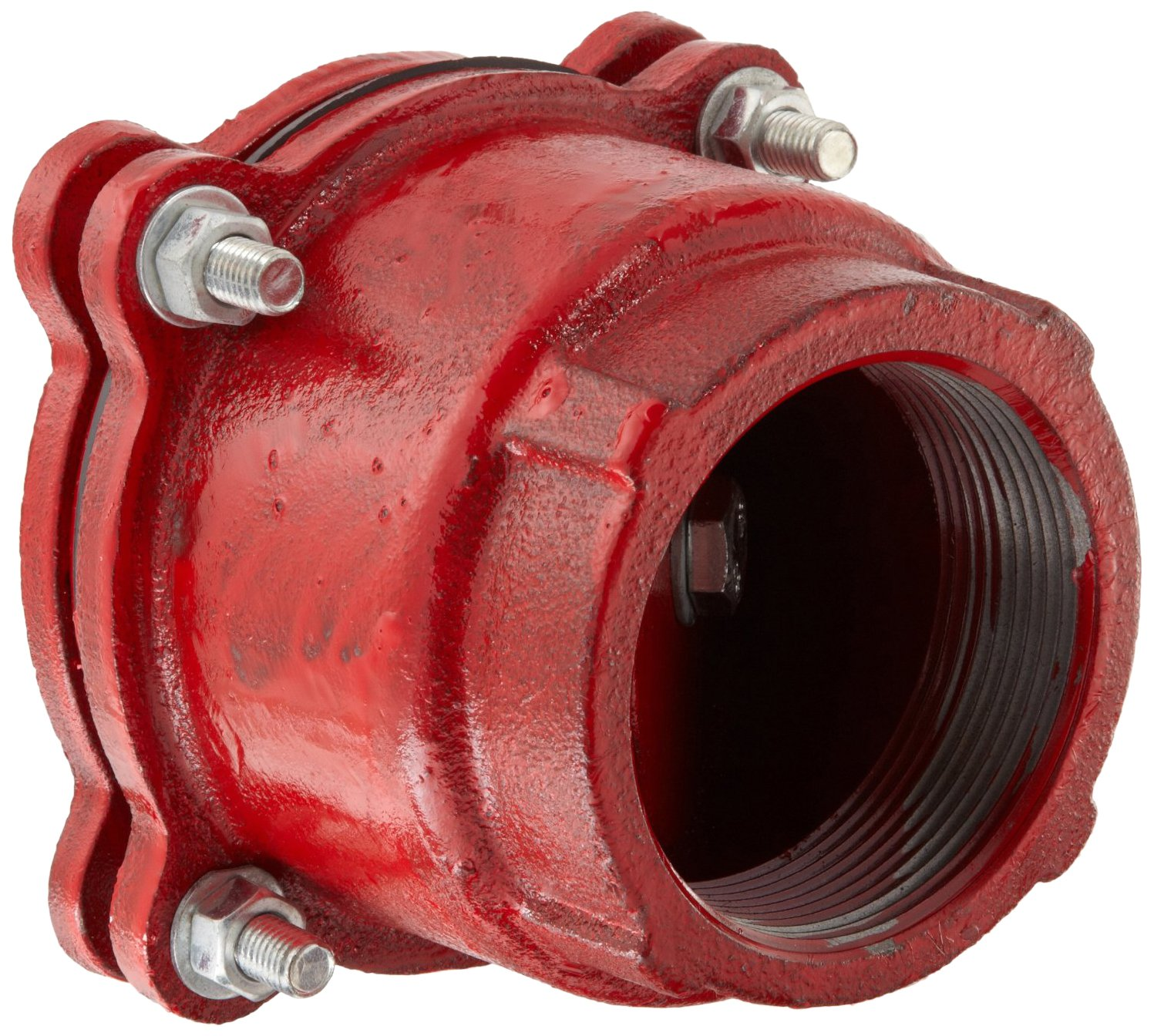 Dixon DFVS40 Painted Carbon Threaded Foot Valve Complete Assembly, 4'' NPT