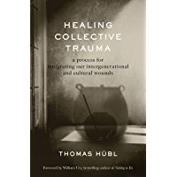 Healing Collective Trauma: A Process for Integrating Our Intergenerational and Cultural Wounds