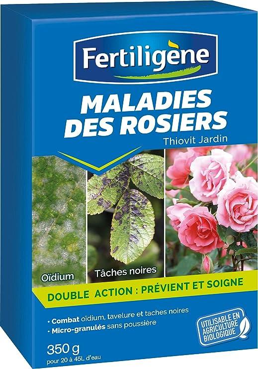 Fertiligène - Enfermedades de los rosales concentradas, 350 g: Amazon.es: Jardín