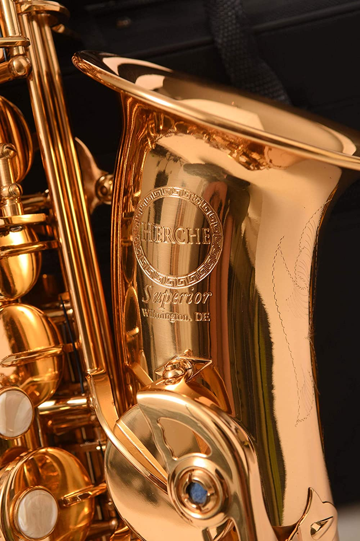 The Wilmington Wind & Woodwind Eb Intermediate Alto Saxophone Musical Instruments & Gear