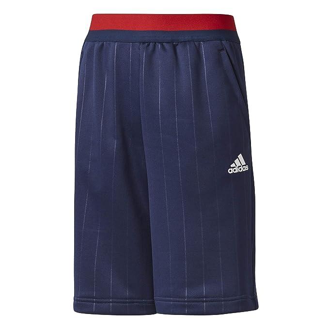 adidas Kinder Fc Bayern München Shorts: : Bekleidung