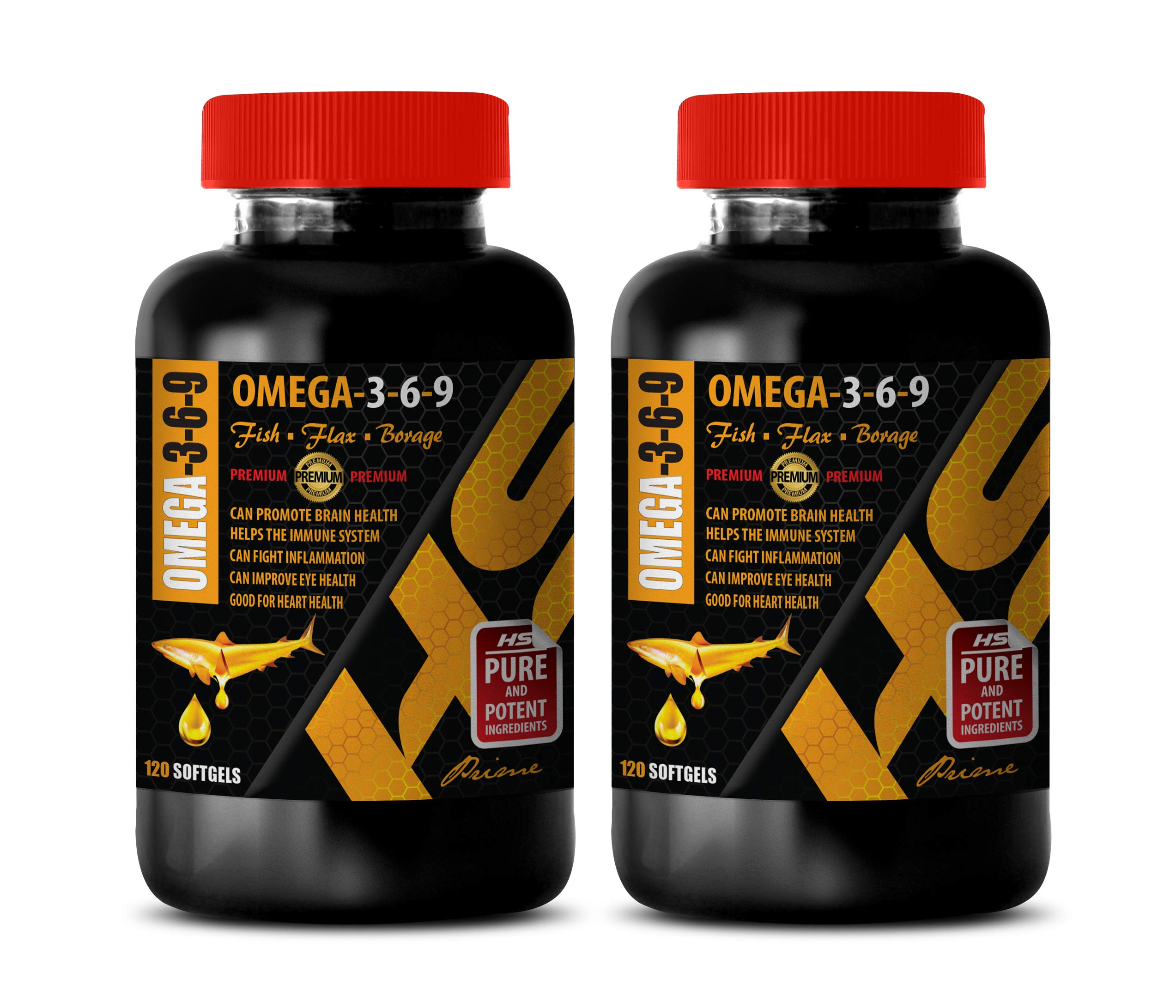 Brain Health Formula - Omega 3-6-9 Premium Complex with Fish, Flax & Borage - Omega 3 Inflammation - 2 Bottles 240 Softgels by HS PRIME
