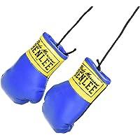BENLEE Rocky Marciano Mini miniatuur bokshandschoenen