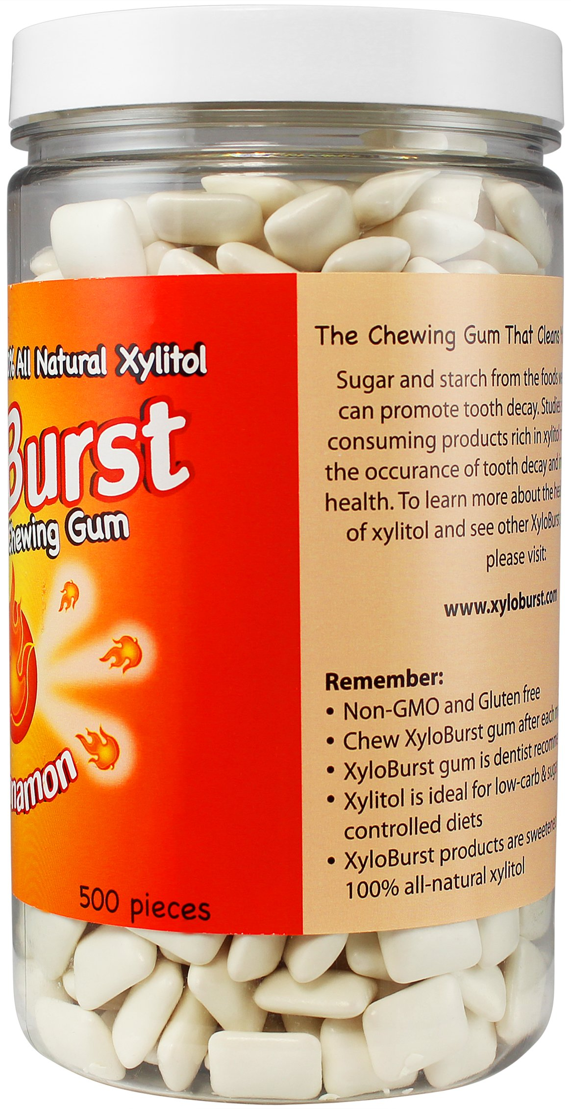 Focus Nutrition, XyloBurst Sugar-Free Xylitol Chewing Gum Jar, Cinnamon - 500 Pieces by Focus Nutrition (Image #2)