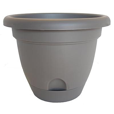 Bloem 818573011152 Living LP1660 Lucca Self-Watering Planter, 16-Inch, Peppercorn : Garden & Outdoor