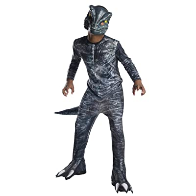 Rubie's Jurassic World Velociraptor Child Costume: Toys & Games