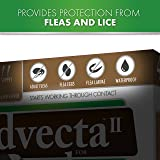 Advecta II Flea Treatment - Flea and Lice
