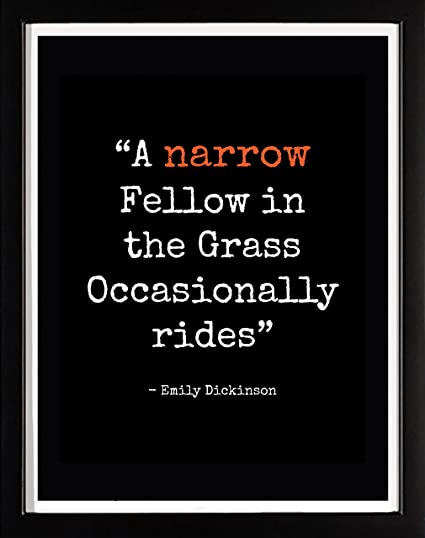 the grass by emily dickinson