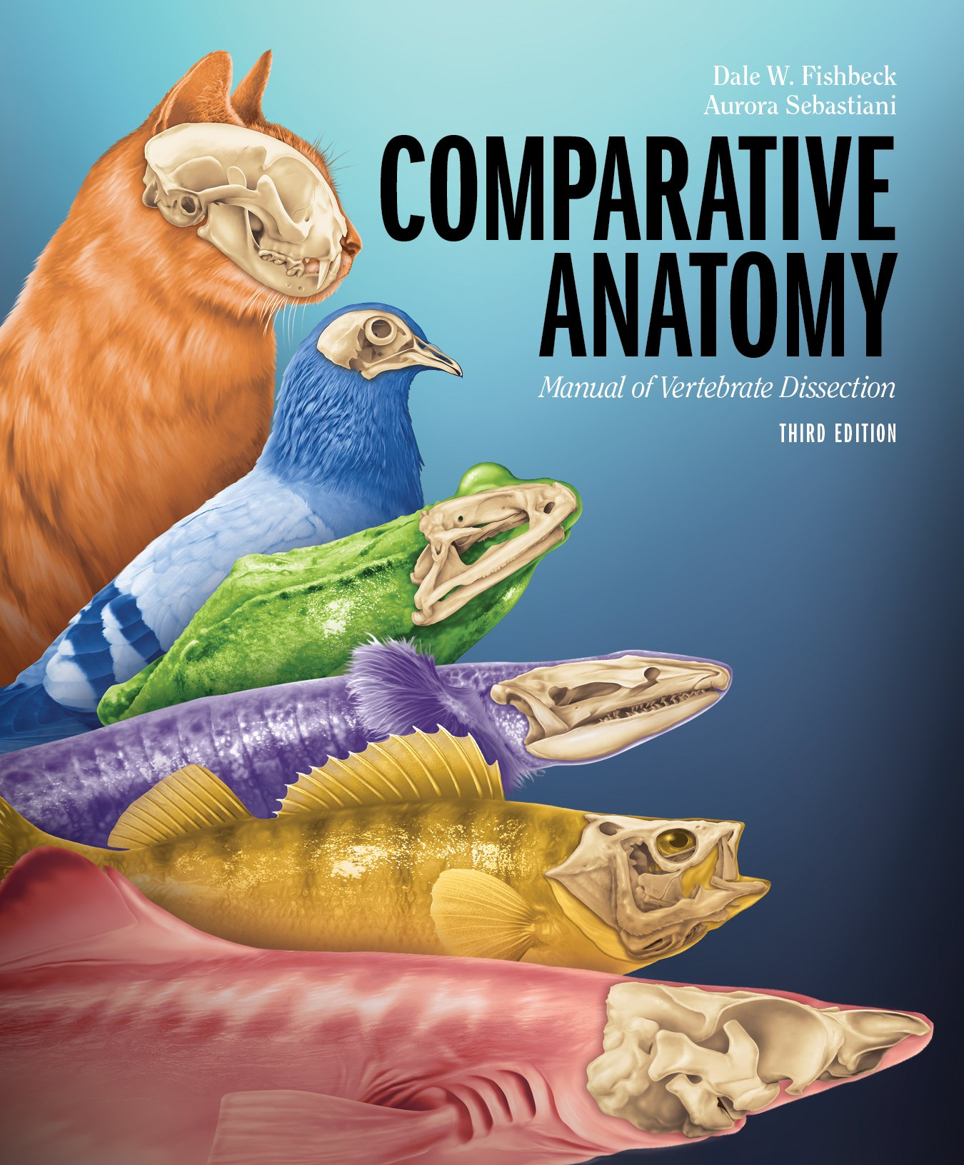 Comparative Anatomy: Manual of Vertebrate Dissection: Dale W ...