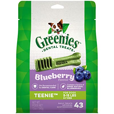 GREENIES ScaryBerry and Blueberry Natural Dental Dog Treats