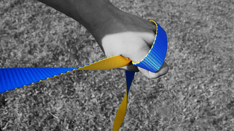 Gibbon Slacklines Flow Line Kit de Slackline Bleu//Jaune Taille M