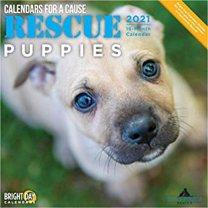 2021 Rescue Puppies Wall Calendar by Bright Day, 12 x 12 Inch, Cute Dogs Calendars for a Cause