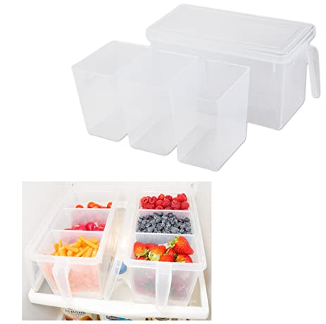 Refrigerator Organizer Container   Clear With Lid, Handle And 3 Smaller  Bins   1 Set