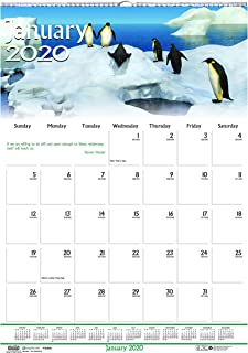 product image for House of Doolittle 2020 Monthly Wall Calendar, Earthscapes Wildlife, 12 x 16.5 Inches, January - December (HOD3732-20)