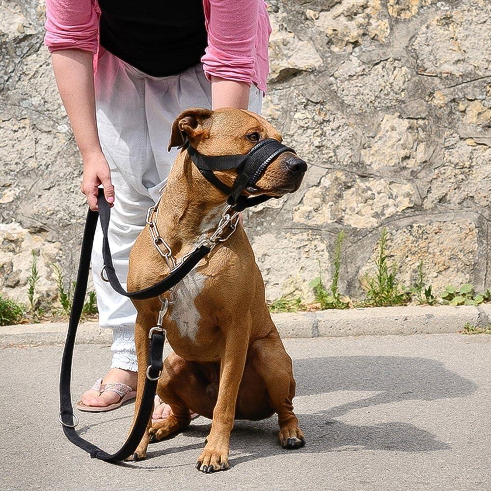 ILEPARK Bozal de Nylon para Perros Grandes Previene Mordidas ...