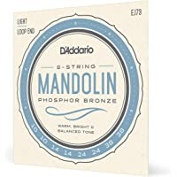 D'Addario EJ73 Phosphor Bronze Mandolin Strings, Light, 10-38