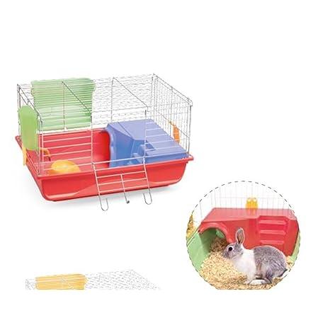 Imac Ronny 60: Amazon.es: Productos para mascotas