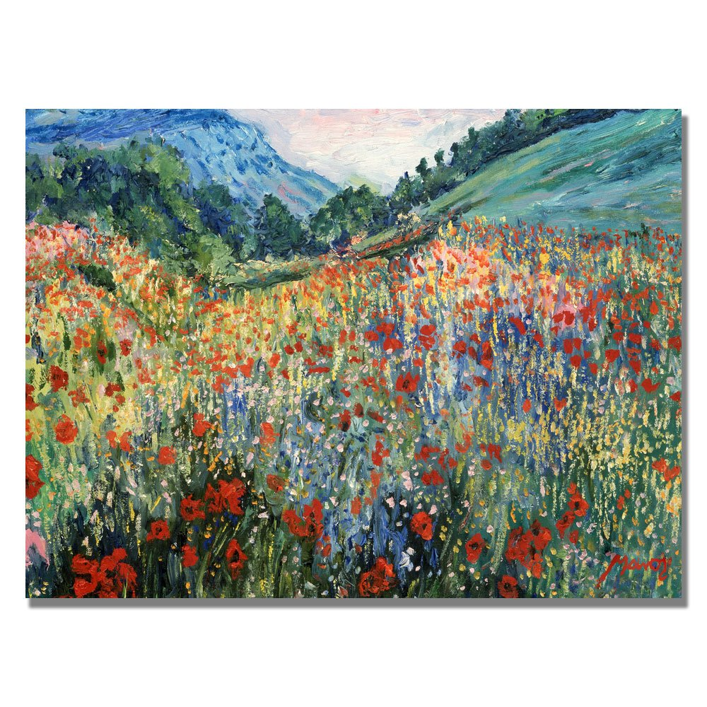 Field of Wild Floweres by Master's Art, 18x24-Inch Canvas Wall Art