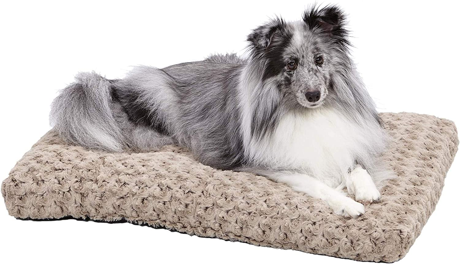 Plush Dog Bed | Ombré Swirl Dog Bed & Cat Bed | Mocha 29L x 21W x 2H-Inches for Medium Dog Breeds : Dog Bed : Pet Supplies