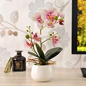KINBEDY Artificial Bonsai Silk Orchids Phalaenopsis with Ceramics Vase Home Office Decoration Party Wedding Decor. Pink.