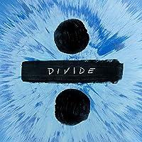 (Divide) (2LP)
