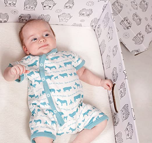 Amazon.com: El bebé caja Co. La Cama caja finlandés bebé ...