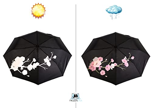 colour changing roses from white when dry to pink when wet - water reactive umbrella