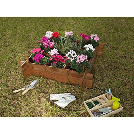 Cajonera seed planter 100: Amazon.es: Jardín