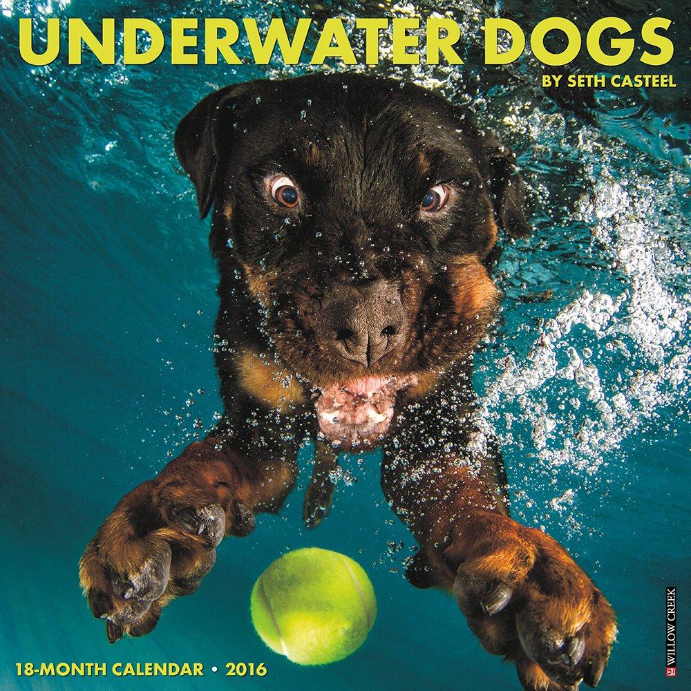 2016 Underwater Dogs Wall Calendar