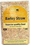 Straw Bale - Pillow Size