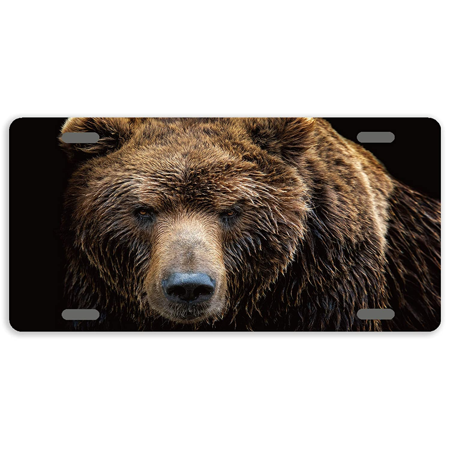 TrunyArt Plate Brown Bear License Plate Covers for Cars Aluminum Tag Sign Decorative Auto Tag Novelty Front License Plate 4 Hole 12 x 6