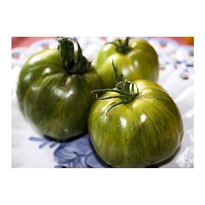 Aunt Ruby German Green Tomato 15 Seeds Heirloom OP Non GMO Beefsteak Type mid season Deep Green fruity sweet slightly spicy 79 days 16oz : Garden & Outdoor