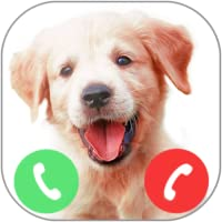 Fake Call From Golden Retriever Puppy Dog Prank (no wifi)