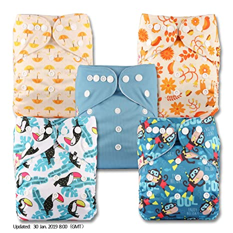 Fastener: Popper Littles & Bloomz Patterns 412 with 4 Bamboo Charcoal Inserts Set of 4 Reusable Pocket Cloth Nappy